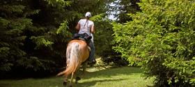 Reiterhof Sulfern: Reiten lernen im Urlaub in Südtirol