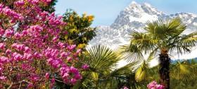 Urlaub in Hafling oberhalb Meran im Hotel Sulfner