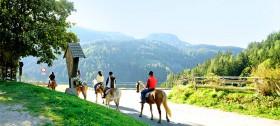 Ausritte und Kutschenfahrten im Hotel Sulfner